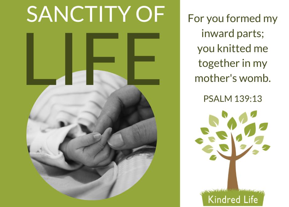 Sanctity of Human Life 2020