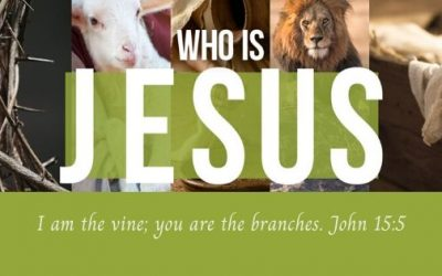 He is the Vine