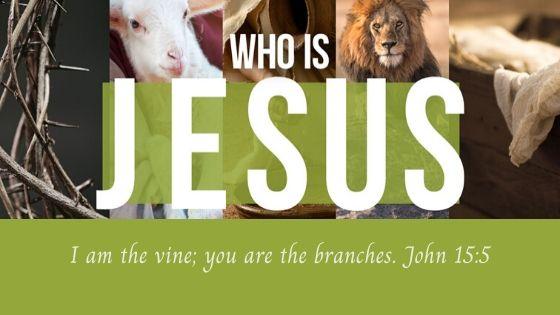 He is the Vine